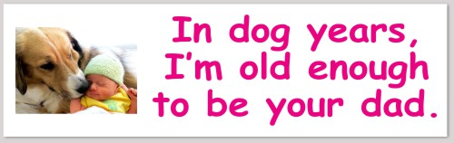 """""""In dog years, I'm old enough to be your dad."""" YOUR OWN TEXT & DOG PHOTO on CAR STICKER http://www.cupooch.com    @cupooch #repost #retweet #cupooch #carsticker #bumpersticker #doglovers #funmeme #custumised #dogphotopic.twitter.com/eiyG89WjqV"""