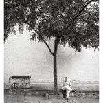 Image for the Tweet beginning: Looking back to Jodhpur India