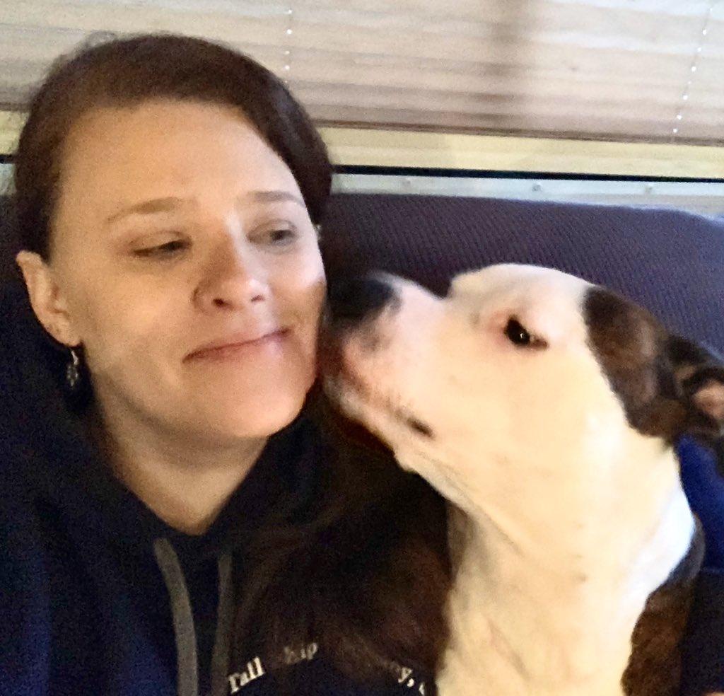I keep mums face very clean! #brindlestaffy #bestdogs #amstaffworld #amstaff #americanstaffordshireterrier pic.twitter.com/utImtC19Hy