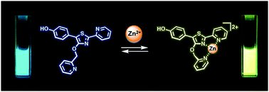 My first Postdoc work on a zinc-responsive fluorophore has been published in Materials Chemistry Frontiers @MaterChemFront. It's my pleasure and honor to work with Prof. Alex Wei group members at Purdue! @wei_group @PurdueChemistry.   https://doi.org/10.1039/C9QM00648F…pic.twitter.com/5pldj3qemv