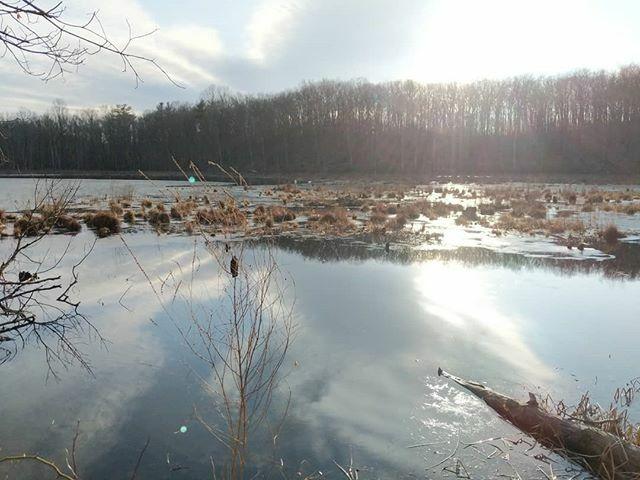 Winter pond ift.tt/38AjByR