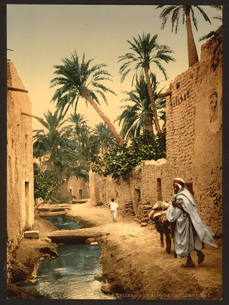 1890: A stunning capture of a street of the town of Biskra in Algeria. It's a beautiful composition with splendid colors! @PicsSilkRoad #SilkRoad #Art #Culture #History #People #Algeriapic.twitter.com/tgtUFFKsGg