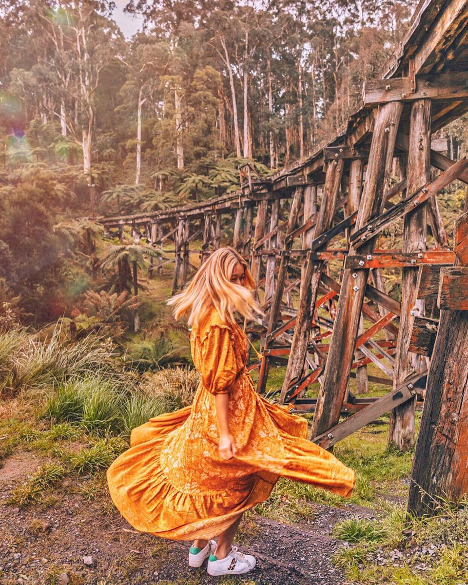 test Twitter Media - Just waiting for Puffing Billy to go by at the Monbulk Creek Trestle Bridge in the picturesque Dandenong Ranges (via IG/connieandluna). https://t.co/eleSzPlbCy