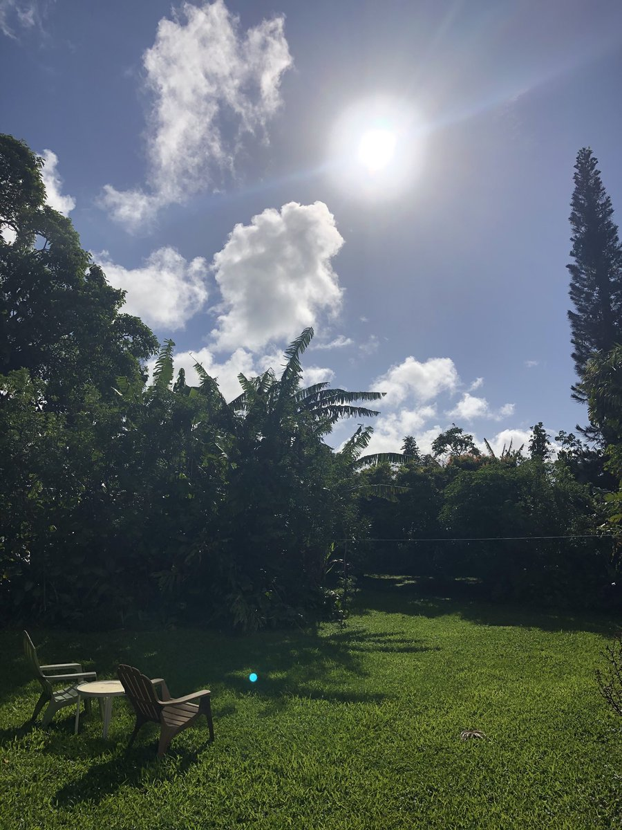 test Twitter Media - Beautiful sunny Sunday in Haiku. #CMWeather #Maui #ConsciousMaui #MagicalMaui #SunnySunday #MauiNoKaOi https://t.co/S1HGQX8x6w