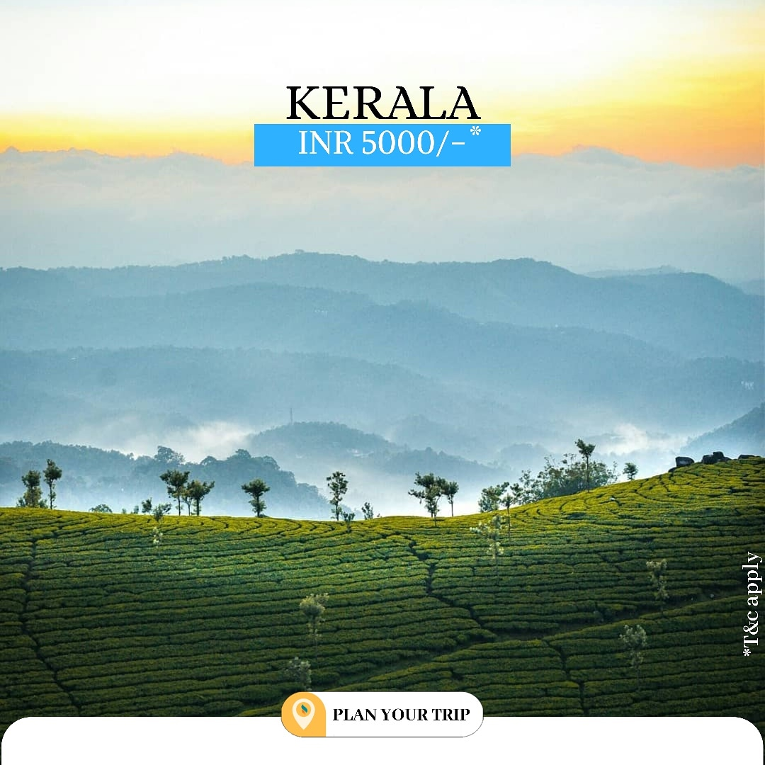 Kerala Duration : 5 Days Starting from Rs 8000/-  Inclusions . Accommodation . Meals . Transfers . Sightseeing  DM for enquires  #Planyourtrip #kerala #keraladiaries #keralagram #keralagodsowncountry #keralatourism #keralaattraction #keralagallery #keralam #entekeralampic.twitter.com/Z43Ac0i8f8