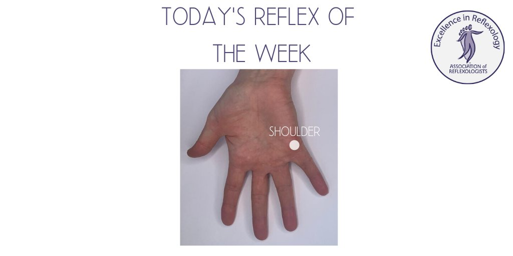 Hand reflexology points - today's reflex point is the Shoulder #mondayreflexpoint #selfhelp #reflexology #toptip #aor #homeofreflexology #welovereflexology #associationofreflexologists #wearereflexology https://t.co/sAiIrZSgEO