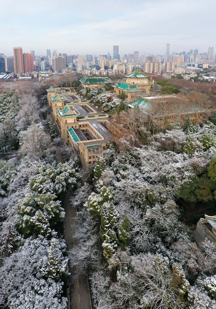 Wuhan University under a blanket of snow. No winter lasts forever, no spring skips its turn