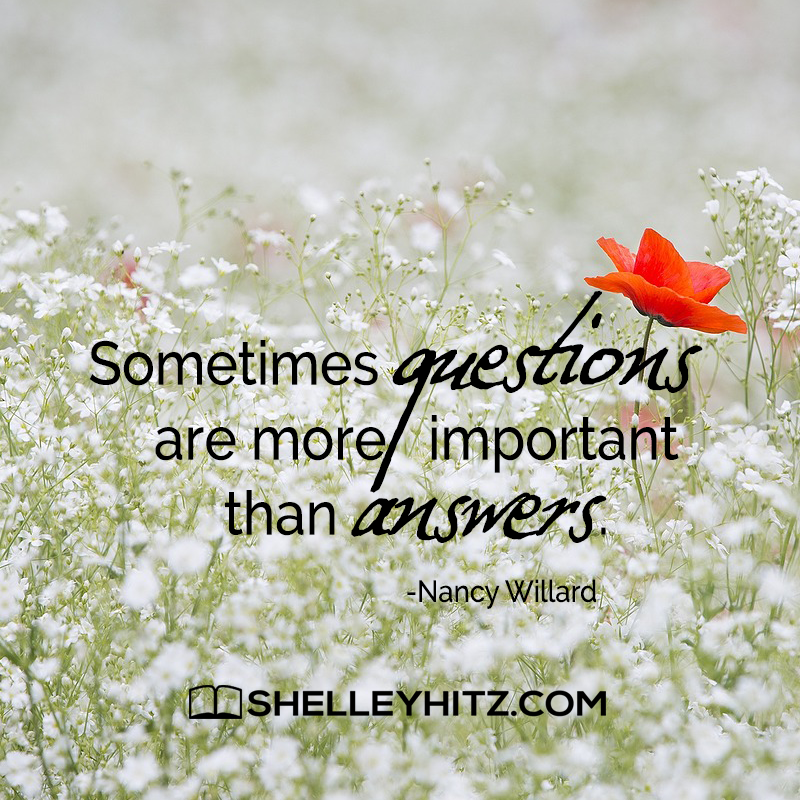 shelley hitz ツ on sometimes questions are more