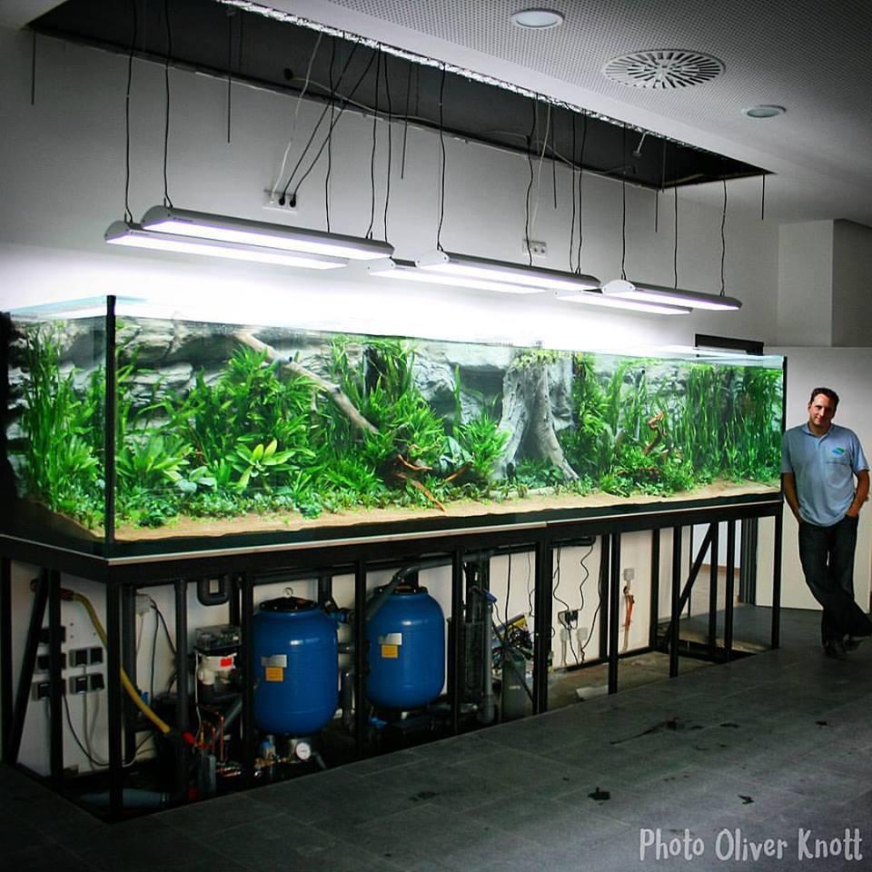 Aquarium Talks On Twitter A 6 40 Feet