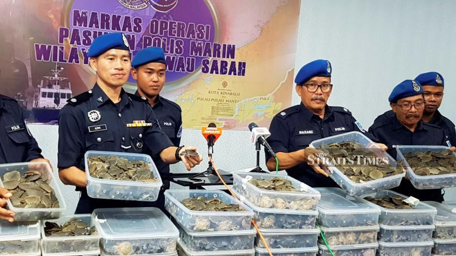 Malaysia: Marine police foil attempt to smuggle 4,000 live baby pig-nosed turtles bit.do/frQR7 via @NST_Online | The pig-nosed #turtle is listed in #CITES Appendix II. #WildlifeCrime #WildlifeTrafficking