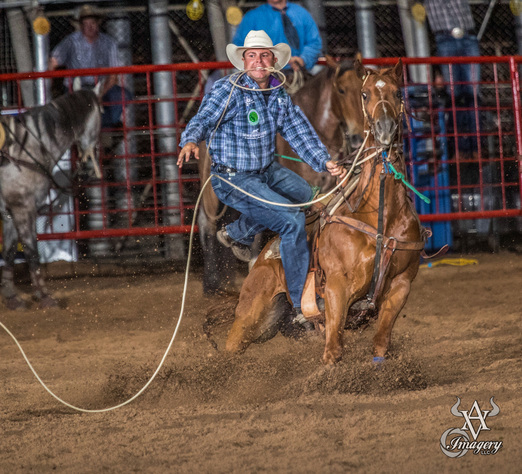 Some #tiedown action from #OldFortDays rodeo 2019   #rodeo #cowboy #rodeolife #roping #rodeotime #letsgetwestern #rodeophoto #rodeolifestyle #timedevents #western #rodeotuff #workingcowboy #ropehorse #horseman #ropinghorse #performancehorse #rodeoroad #cowboyuppic.twitter.com/1E7C2lWAxw