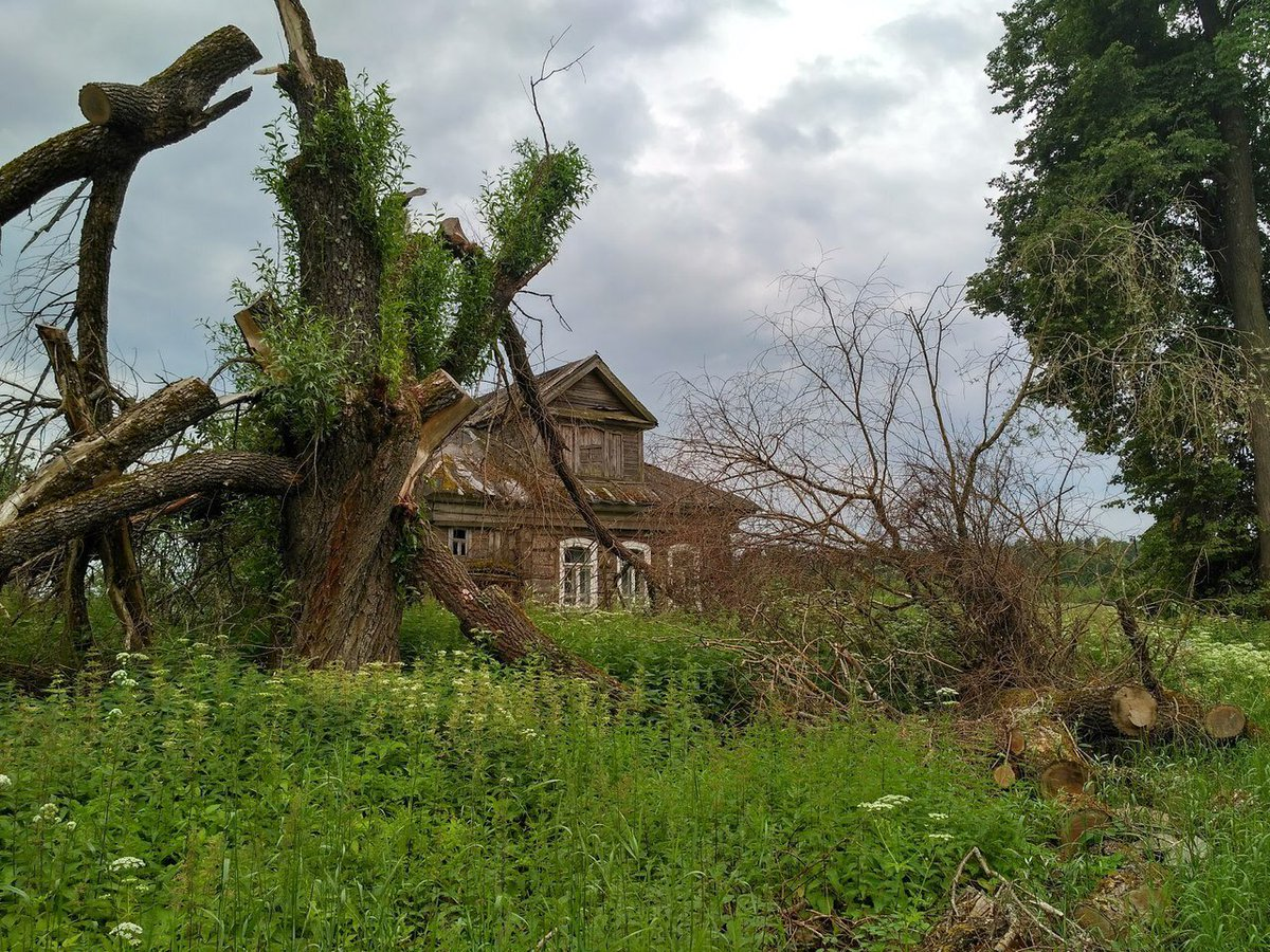 деревня рагодино тверская область фото