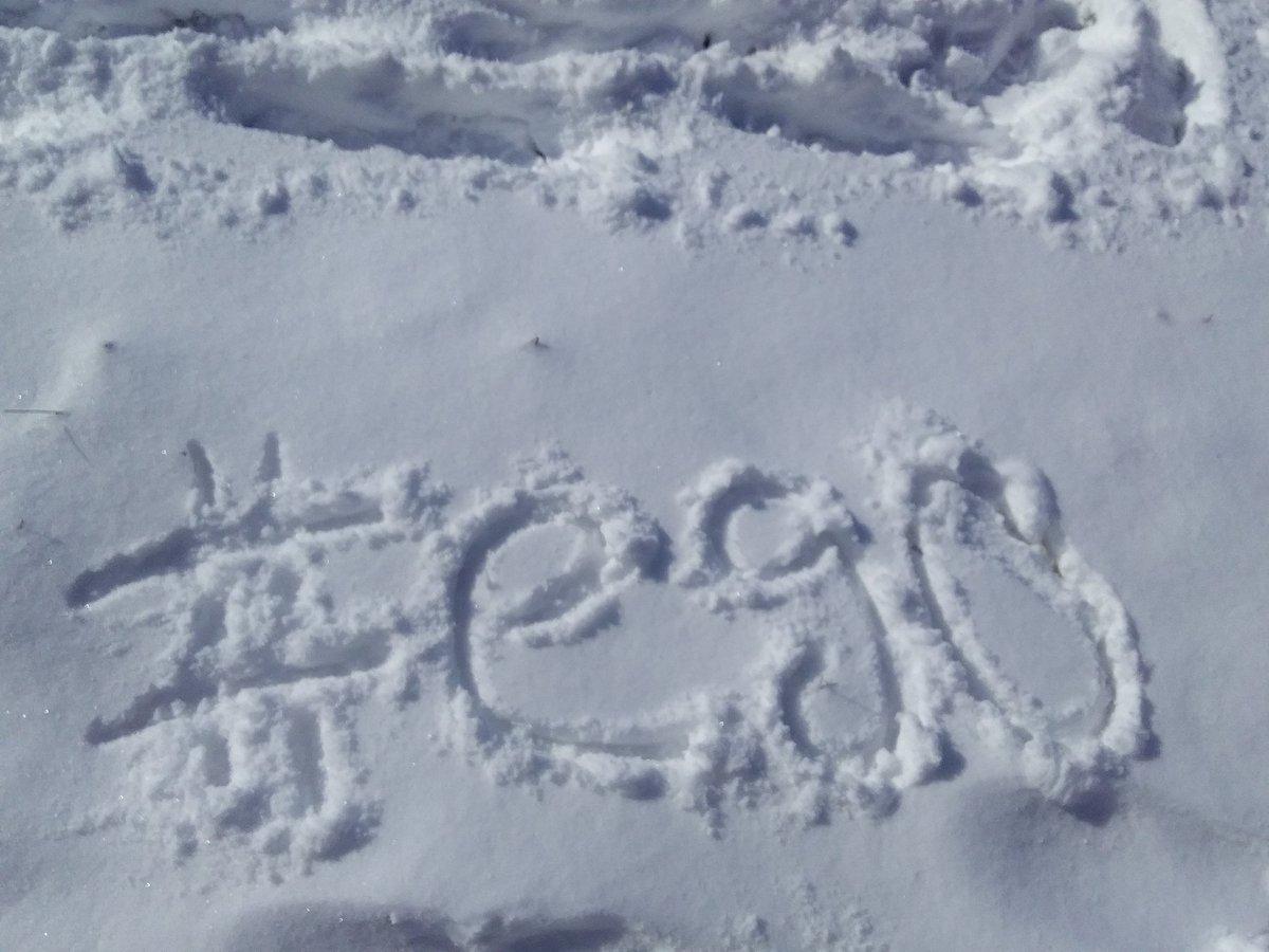 Поздравление написанные на снегу которые разыгрывались