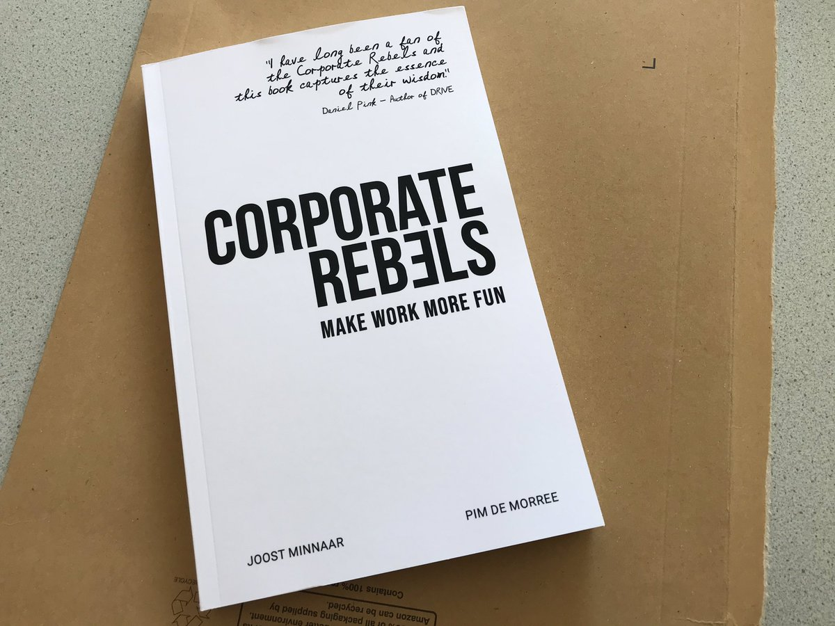Image result for corporate rebels book