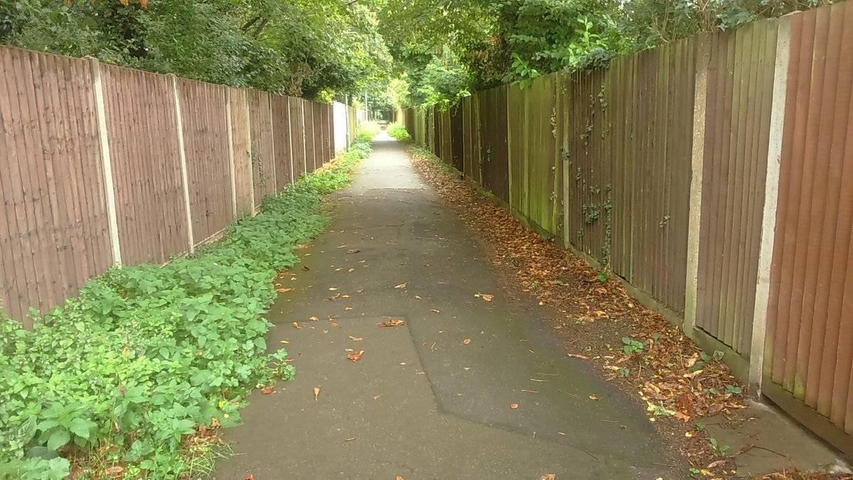Quick survey: what do you call a path between houses/fences or with houses on one side & wilder land on the other? Where does the word come from? Pls RT, thanks.