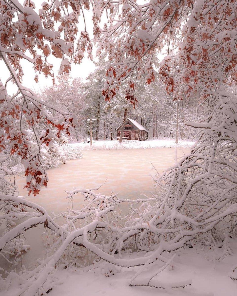 смешанный овчаркой фото красивых зимних уголков окрашиваемых прядей