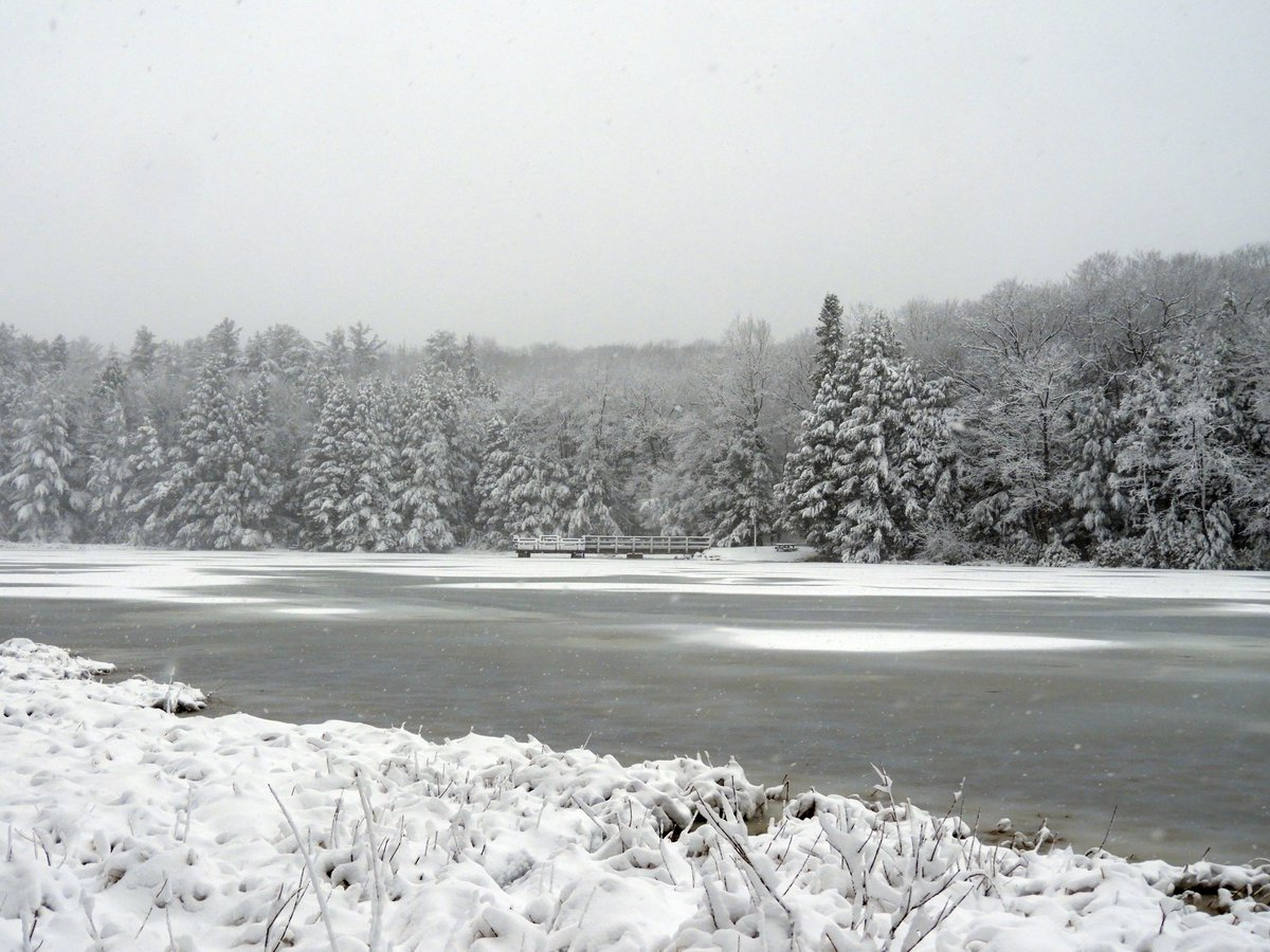 Check out this ❄️ view from today of Black Moshannon Lake at #BlackMoshannonStatePark in @ThePAwilds! #PASnowDays