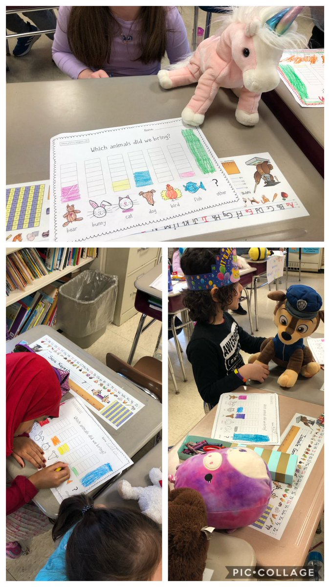 Graphing our stuffed animals for Stuffed Animal Day. ⁦@KnappElementary⁩