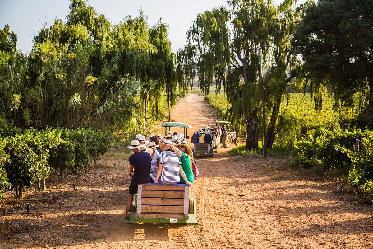 And the count down to our annual #Harvest2020 Festival has begun... looking forward to picking grapes while exploring the vineyards around our historic manor house in 4 hours!!! #Nederburg