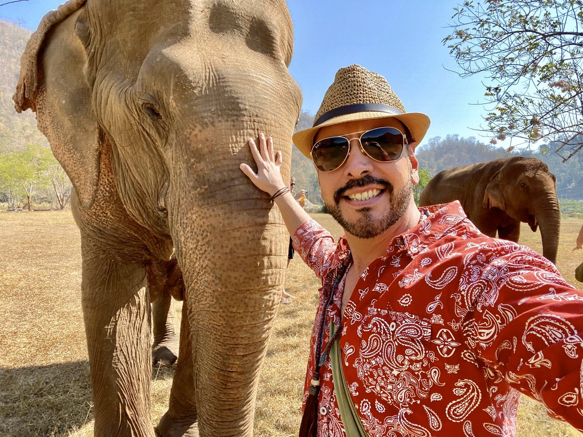 #Sophie la elefanta que me toca cuidar es invidente, así la abandonaron los humanos después años de explotación. Hoy, se guía solo por el olfato y el sonido #ElephantNaturePark #ChiangMai #Thailand pic.twitter.com/fJzJVLROgL