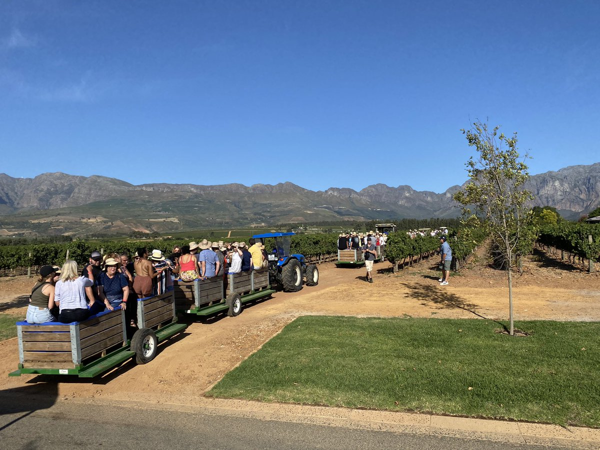 Strolling through the vines, cutting grapes with the resident farmer, tasting new releases with the winemaker, and dining under the stars - memorable debut at the @Nederburg harvest festival!