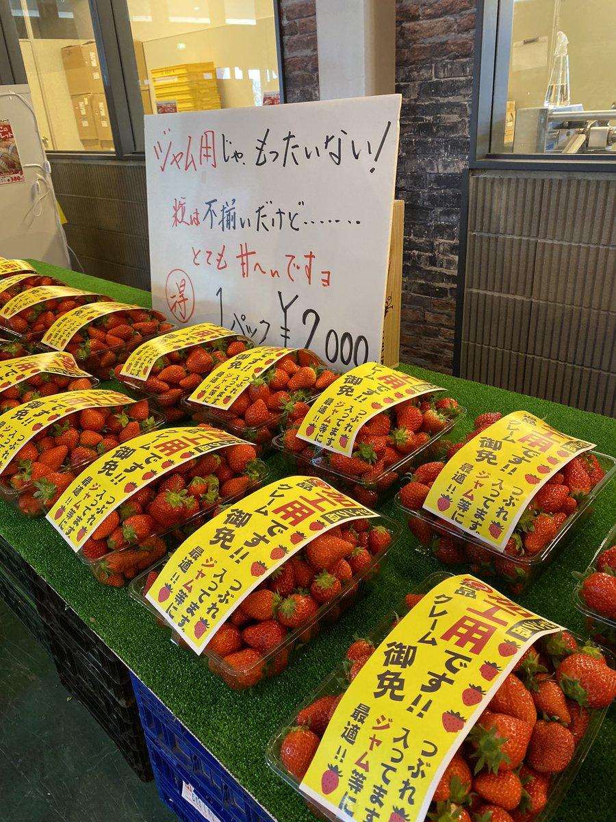 山梨でいちご狩り。今時の苺は練乳なしでも十分甘いのでそのままでも本当に美味しい #山梨FUJIフルーツパーク  #いちご狩り https://t.co/BkL5qKt5eq