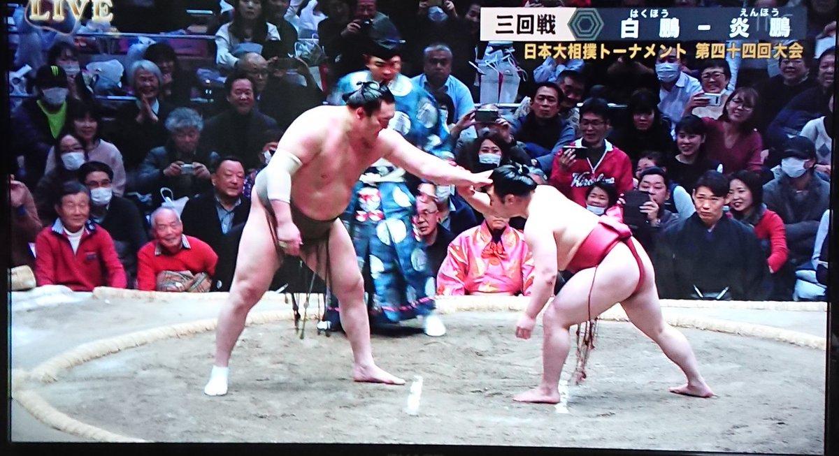 えん ほう 相撲 動画
