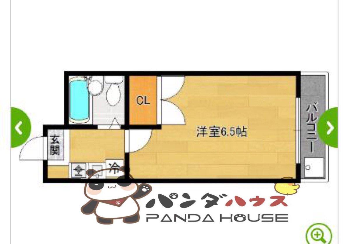 大学 panda 京都
