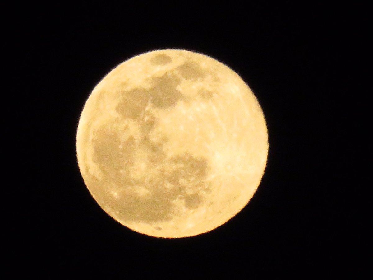 今の満月さん#月 #三日月 #満月 #星 #星空 #星景 #星景写真 #いまそら #イマソラ #自然 #天の川 #今日の空 #ファインダー越しの私の世界 #sky #moon #moon_of_the_day #moonporn #moonpics #moon_shots #moon_awards #moon_magic #instamoon #lluna #starrysky #starrynightpic.twitter.com/BzaCqXxLCV