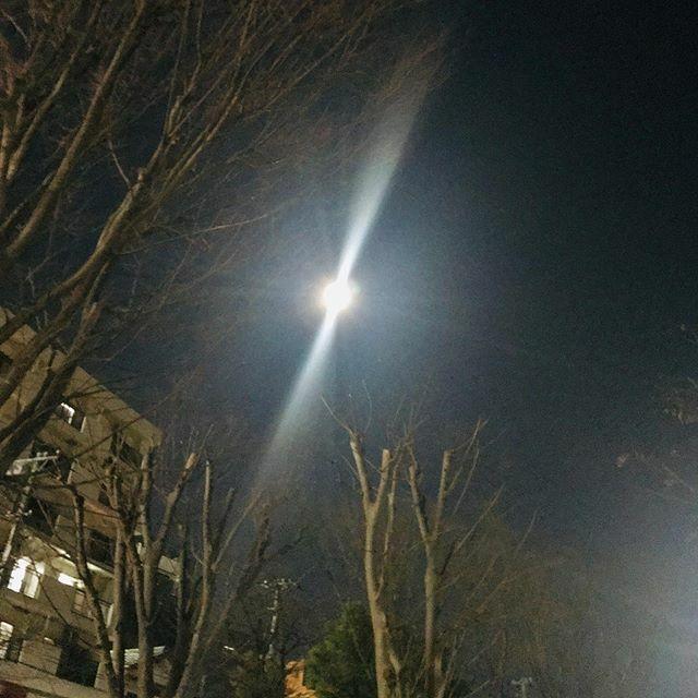 2/9/20 #日本 #千葉県 #千葉市 #スノームーン #満月 #月 #空 #japan #chibaprefecture #chiba #snowmoon #moon #sky #instasky #instamoon https://ift.tt/2UBFzxppic.twitter.com/Uh2spKVahq