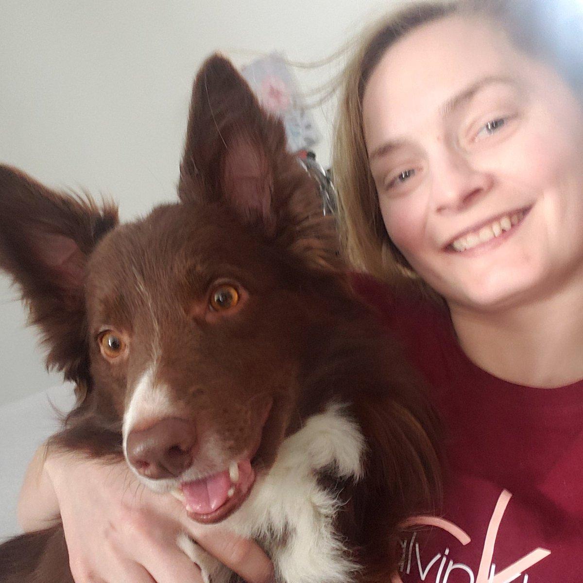 #love my Winnie boy #dog #dogs #dogphoto #dogselfie #bordercollie #bordercolliesnuggles #bordercolliephotos #bordercollielove #bordercollielovers #reddog #dogsarelove #dogsarefamily #dogcuddle #doglooks #dogsmile #dogsmileselfie #smilingdog #bordercolliephoto @CalvinKleinpic.twitter.com/qc5HO4evFT