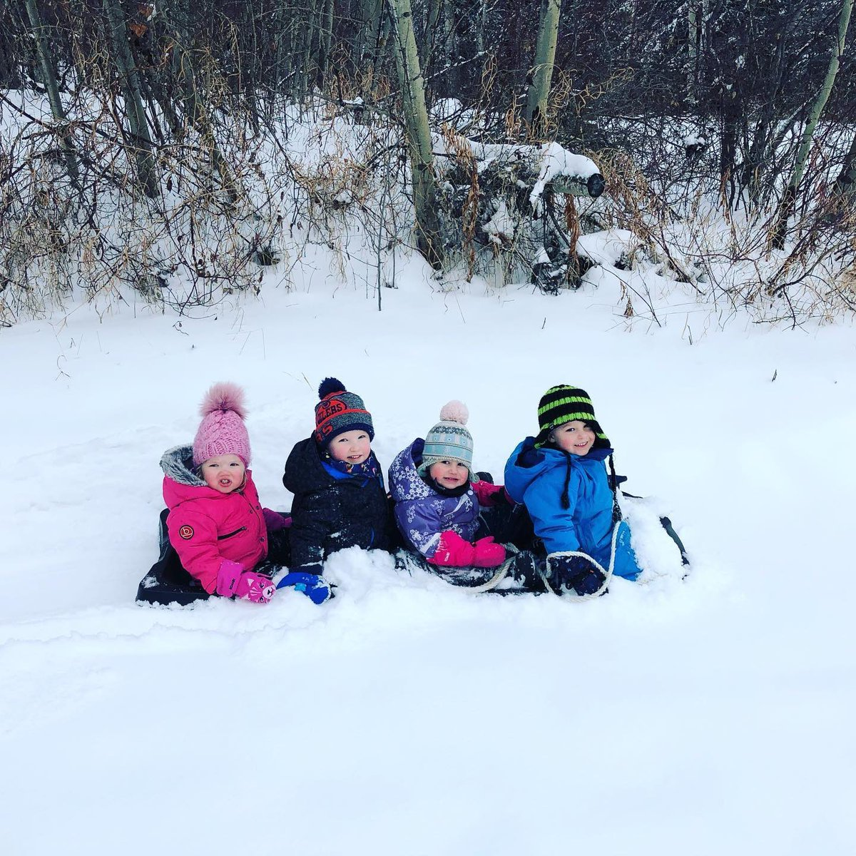 Sunday's are for sledding!  You heading outside today? #ExploreVermilion #VermilionProvincialPark #SkiNorthAB #TakeItToTheLake #snowseeker #sledgang #familyfun #letsgoagain @IAmASnowSeeker  Thanks to Megan Hartwell for this great pic of the kiddos loving the snow!pic.twitter.com/8BHqnmVXmY