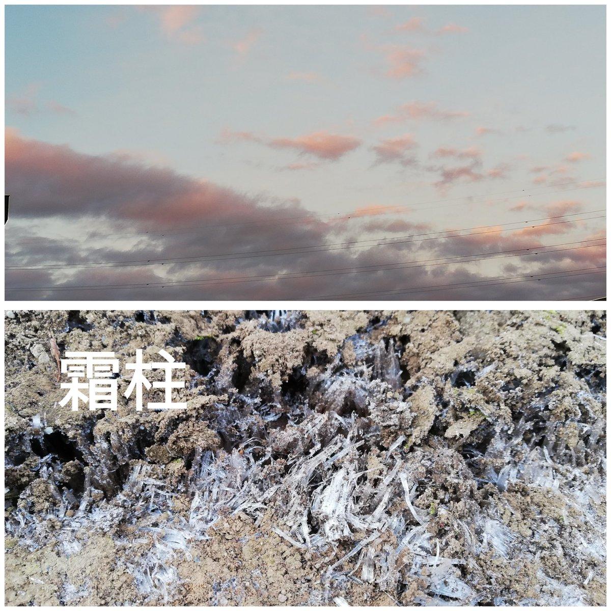 おはようございます。今朝も冷え込みました今週は暖かくなりそうです気温差に体調崩さないように過ごしましょ🍀*゜
