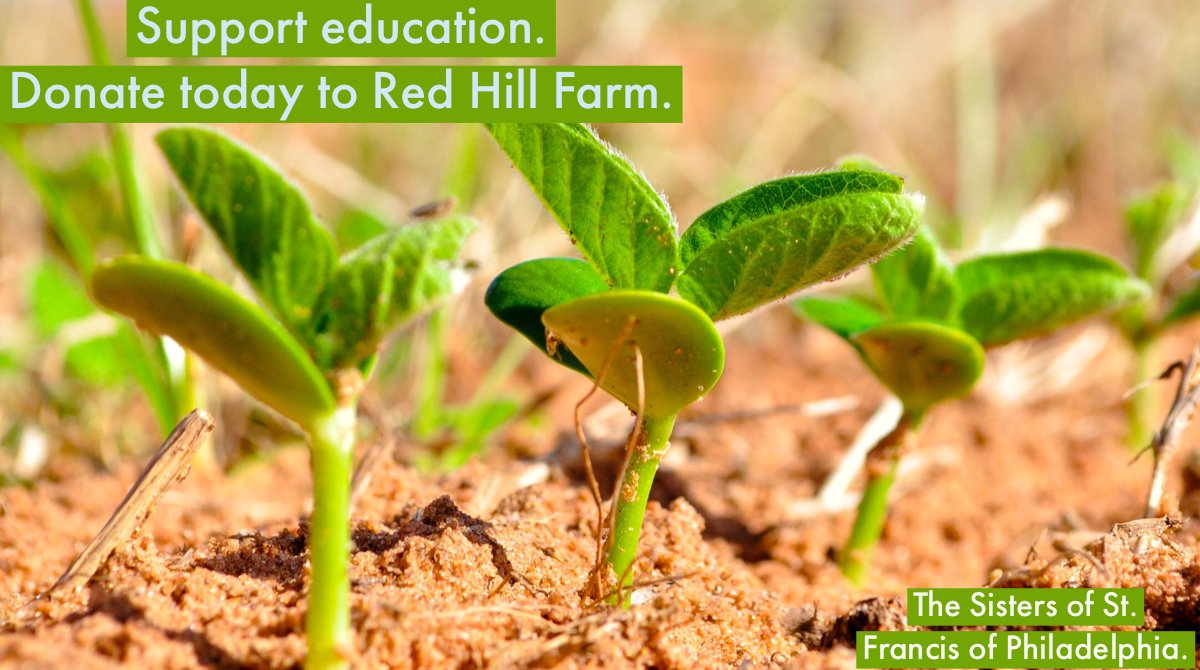 test Twitter Media - Give to support Red Hill Farm's children's programs: https://t.co/fD0ql9UNYQ. https://t.co/HCKAe99ZrA