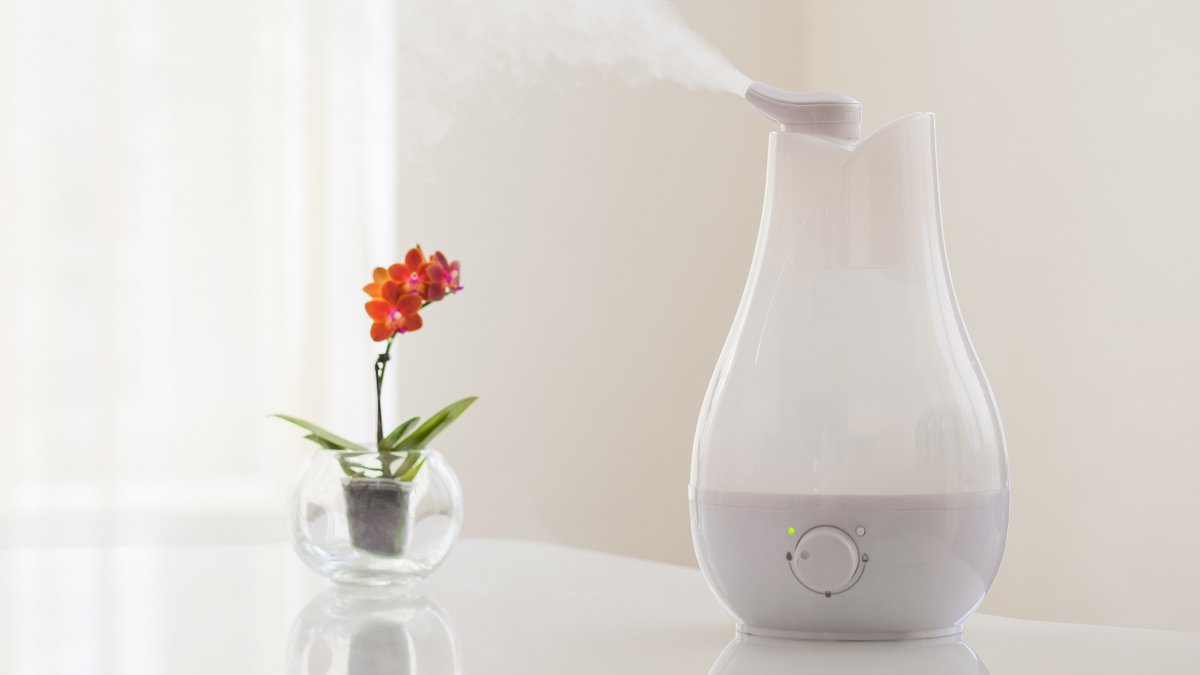 Keep the varying humidifier types in mind when looking for the right one to meet your needs. #homeprojects #lifetips   http:// cpix.me/a/92026640     <br>http://pic.twitter.com/HFavnhk9K3