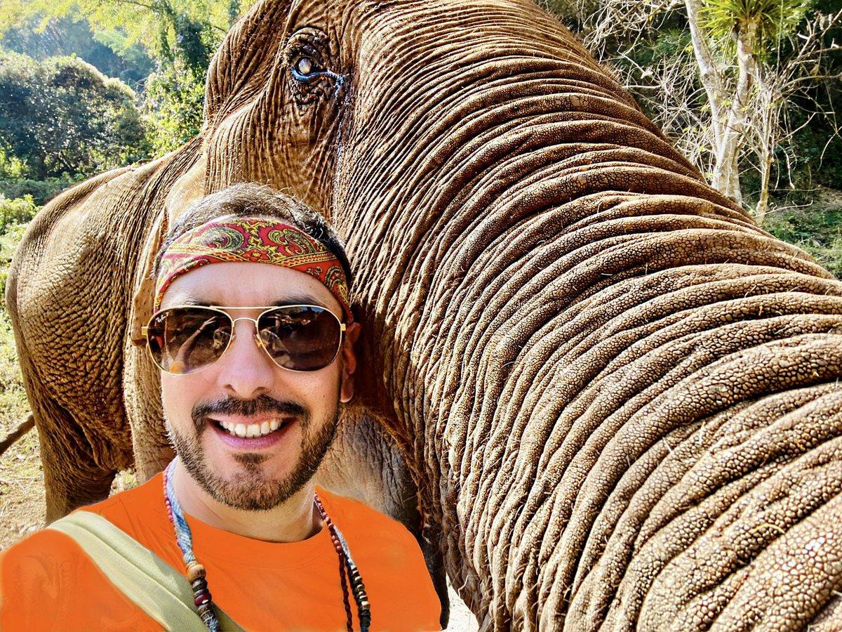 Parecería que (Sophie) quería una #Selfie nuestra antes de despedirnos #ElephantNaturePark #Sanctuary #Travel #Life #Amazing #Smile #Cool #Inspiration #BestOfTheDay #InLove #Happiness #Thailand pic.twitter.com/cIvnxmfjb8