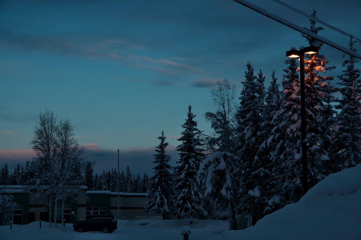 3晩目は晴れ間はあったもののオーロラは皆無でしたw 明け方にはまた曇り出したし。 日曜はノースポールから出るバスがなくなるので、土曜の内にフェアバンクスに移動。 アラスカでジェルバマテ茶を飲んで悦に入るなど。 https://t.co/9AbmfJ47qe
