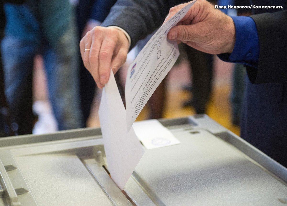 Картинка голосование и опрос