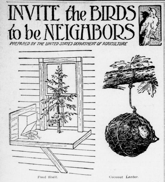 Invite the birds to become neighbors (1917) #ChronAm http://ow.ly/pQK050y961g #Wisconsin #WisconsinNews #WisconsinHistorypic.twitter.com/DlGtqbjbZG