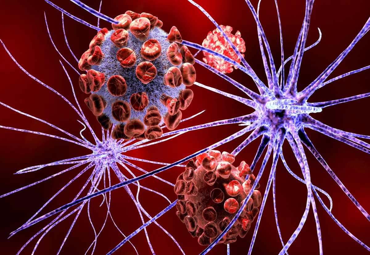 #OSUCOM researchers received @US_FDA approval for WORLD'S FIRST #genetherapy clinical trial to treat Multiple System Atrophy (MSA), a rare neurodegenerative disease w/ symptoms similar to #Parkinsons https://go.osu.edu/BnAp @MSACoalition @NIH @OSUWexMed @OhioStateNeuro @KrystofB