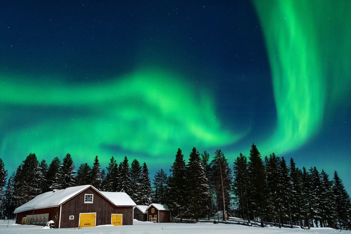 Last week our sky was filled again with this beautiful work of the mystical painter. #paintinginthesky #northernlights #auroraborealis #auroras #aboveordinary #originallapland #torniorivervalley…