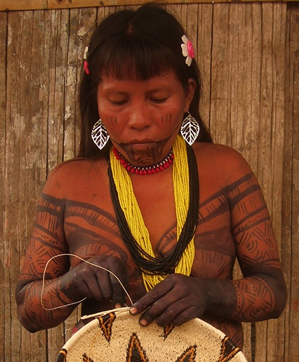 "In Peru, the ink of Genipa americana is called ""huito"". Such a a fabulous natural temporary #tattoo ink! #ethnobotany"