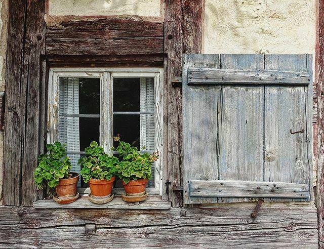 Schönen #fensterdienstag euch allen #fensterliebe #windowsofinstagram #windowswithplants #bauernhaus #freilichtmuseum #museumsfenster #badwindsheim #franken #visitfranconia #diewocheaufinstagram #latergram #summerflashback #museumundmehr https://ift.tt/2SyYNRJpic.twitter.com/RfJFVJHtM4