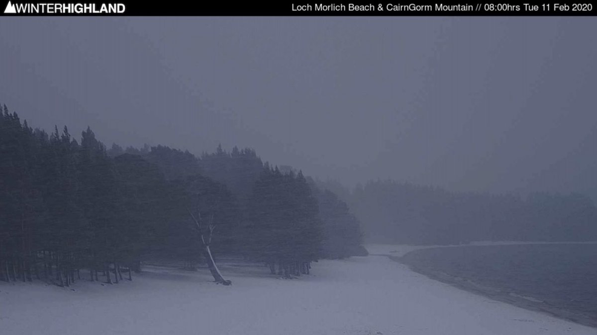 Still snowing hard on the webcam at Loch Morlich beach this morning almost 24hrs after it started. #cairngorms #winteratlast #bringonthesnow