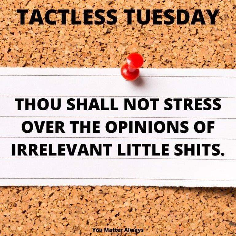 TACTLESS TUESDAY TIME AGAIN FOLKS #YouMatterAlways #tactlesstuesday #lighthearted #laughterisgoodforthesoul #laughteristhebestmedicine #humour #straighttalking #sayitasitispic.twitter.com/Wme5dxz2ng