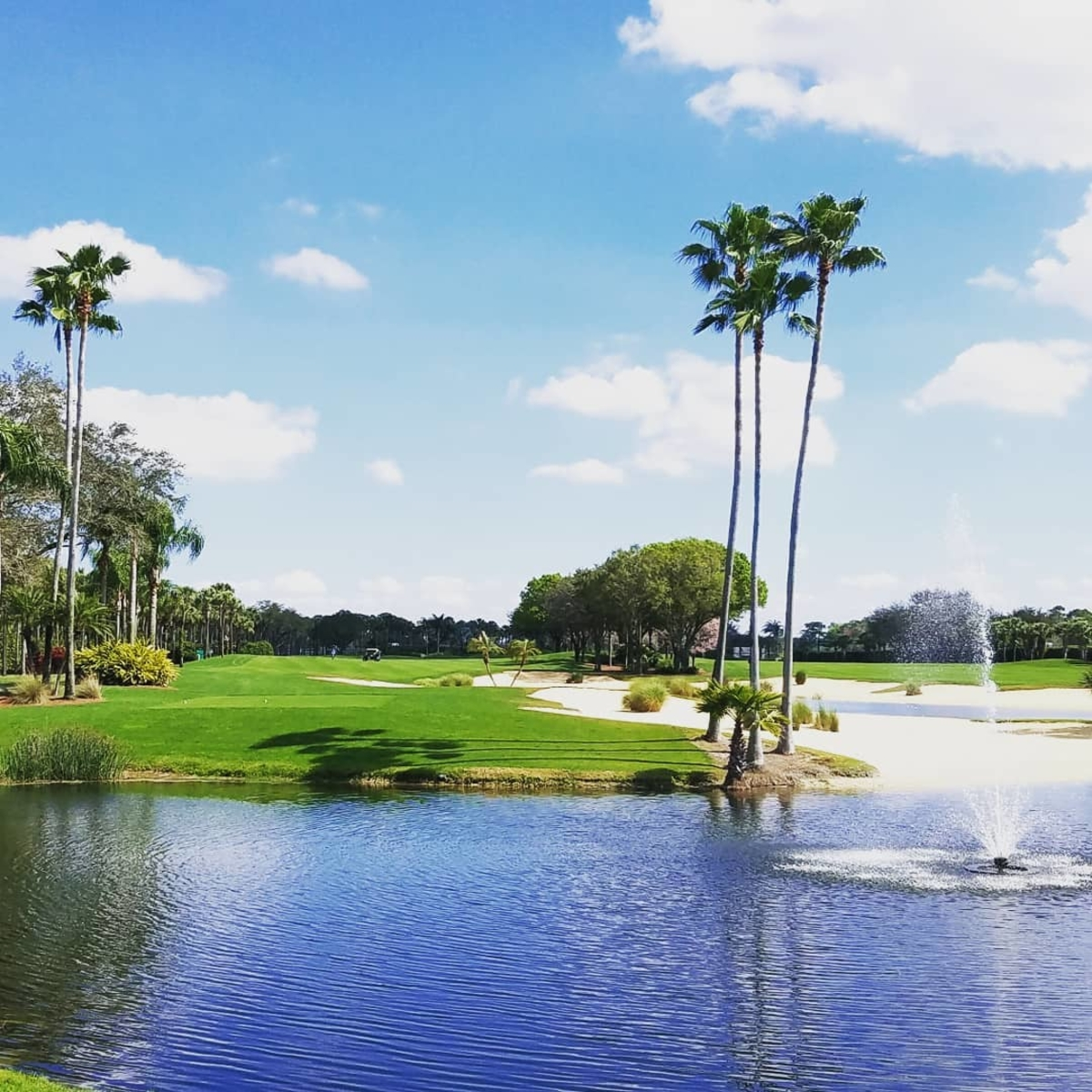 It's hard to focus on your swing when the view looks like this.  (Photo Credit: @jgorms41) https://t.co/Geeb96SDJX