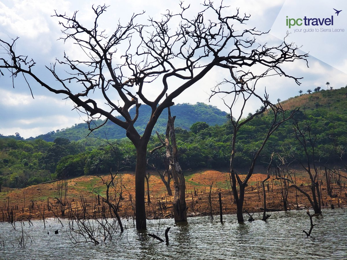 Sightings during a cruise on the Bumbuna Dam.  #ipctravel #yourguidetosierraleone #bumbunadam #sierraleone https://t.co/ZqkRJWy7fF