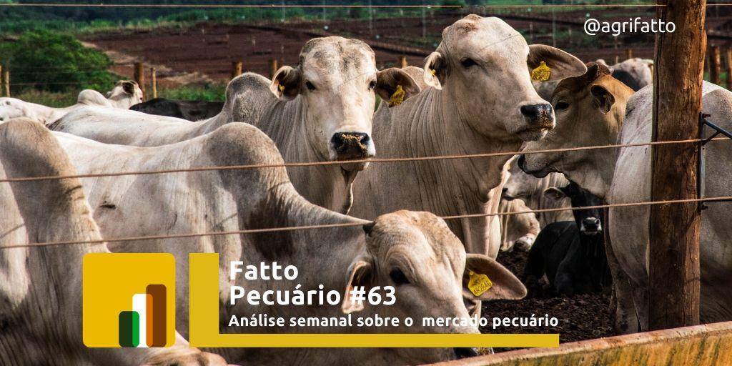 O mercado ganhou fôlego na primeira semana de fevereiro, resultado da necessidade de recomposição das escalas e do maior consumo esperado neste mês.  Leia mais no nosso Blog.   http://blog.agridata.agr.br/fatto-pecuario-63-analise-semanal-sobre-o-mercado-pecuario/…  #boigordo #Commodities #b3 #pecuariadecorte pic.twitter.com/P9AbfTADsz