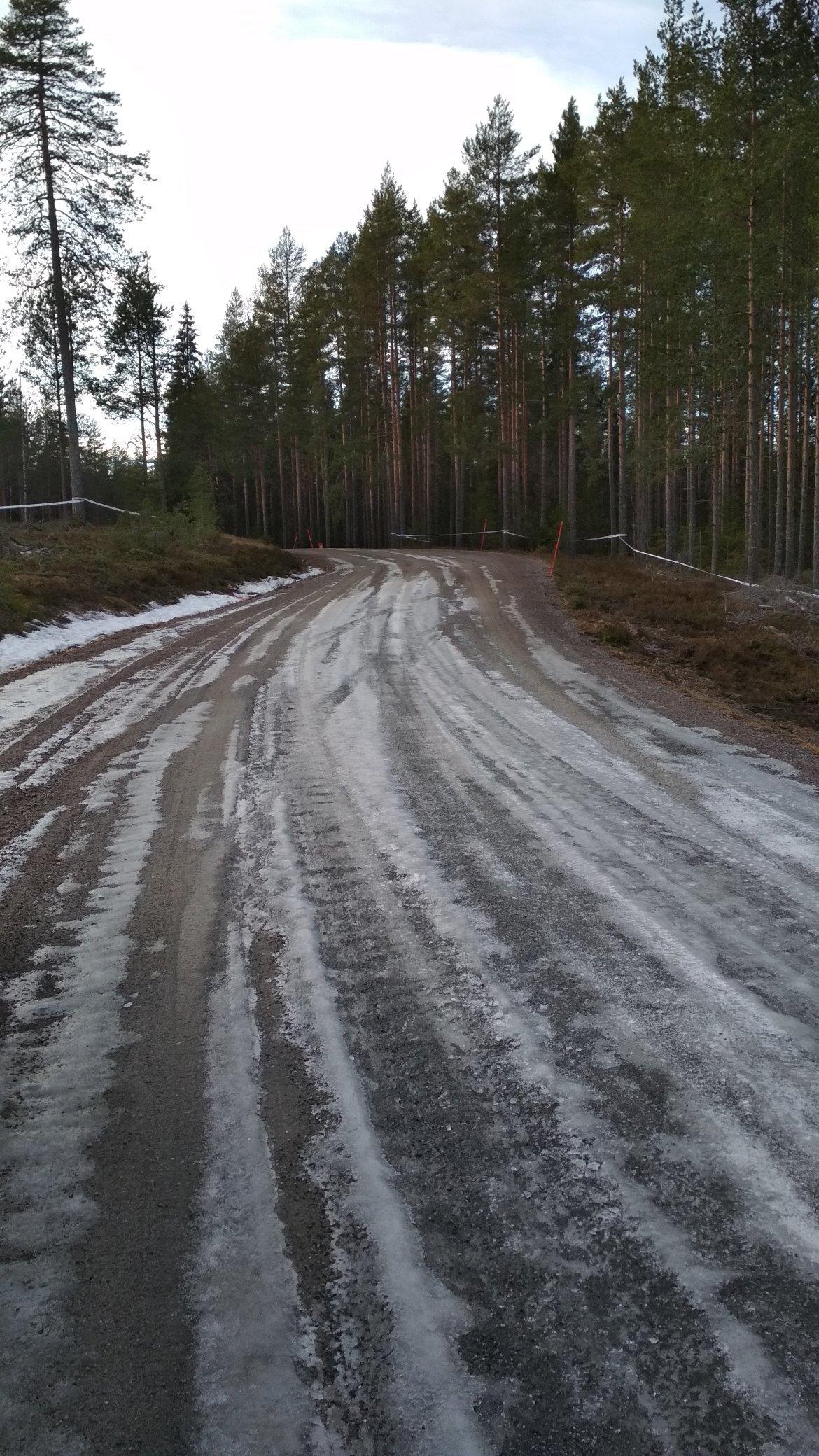 WRC: 68º Rallye Sweden [13-16 Febrero] - Página 2 EQgtgCUW4AAwbPg?format=jpg&name=4096x4096