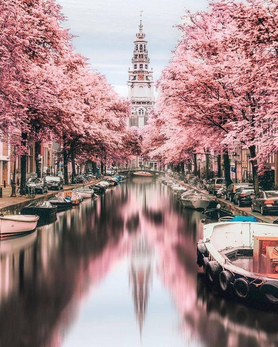 Gorgeous places. Amsterdam, the Netherlands  by: @travel.escape . . . #amsterdamcity #amsterdamlife #photooftheday #travelgram #seetheworld #travelinspiration #travelgoals #travelinggram #bestplacestogo #exploremore #exploretocreate  https://soo.nr/chm3pic.twitter.com/CgcTctiJDo